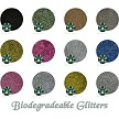 Biodegradable Glitter Assortment